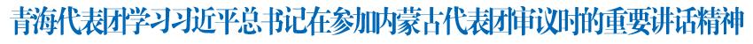 团结奋斗推动高质量发展青海代表团学习习近平总书记在参加内蒙古代表团审议时的重要讲话精神