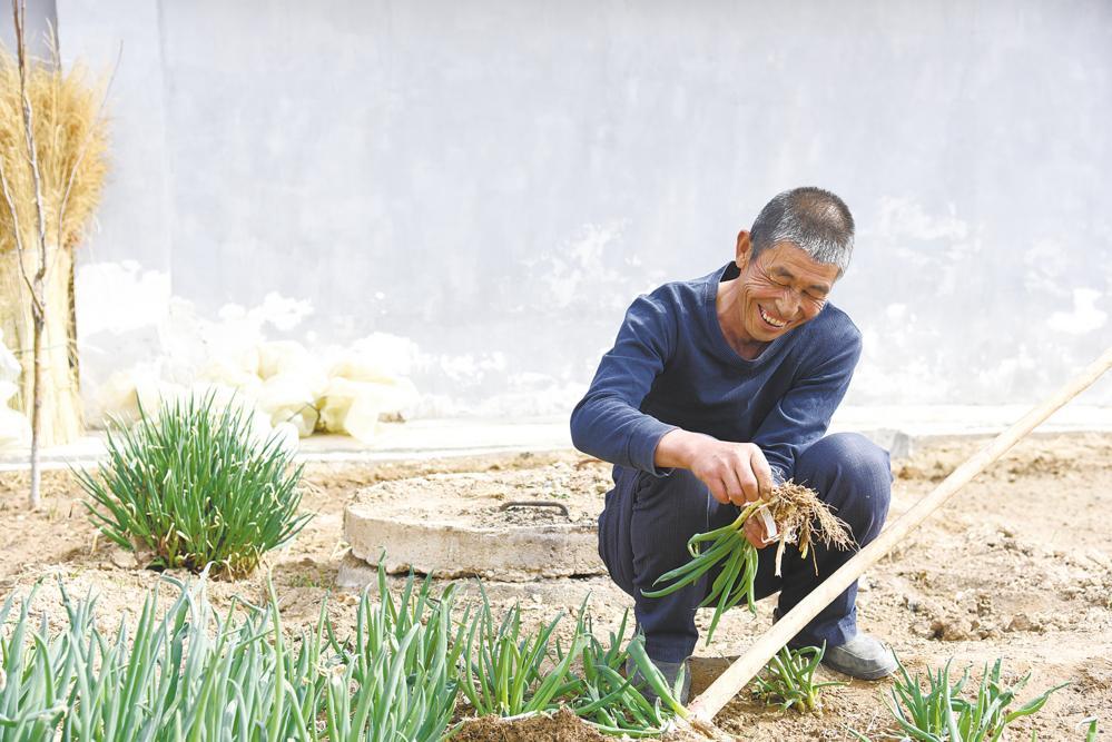 龙羊新村的小康故事