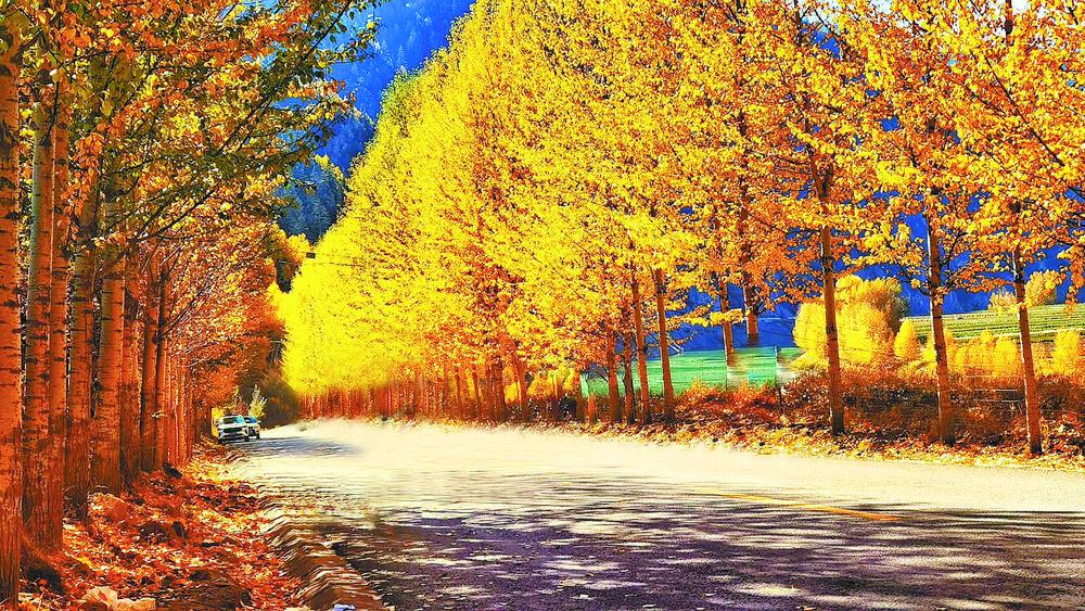 """秋之青海 奔赴山水乐园间的""""诗与远方"""""""