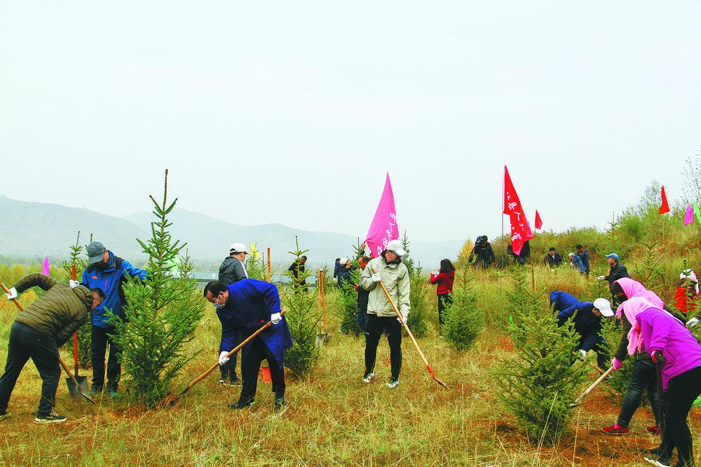 互助县塘川镇总寨村开展秋季全民义务植树活动